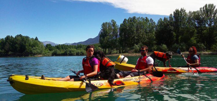 Paseos en canoa con mascotas/Nómadas del Pirineo