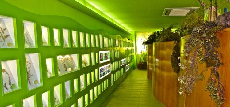 Centro de Interpretación Plantaria de Cosuenda