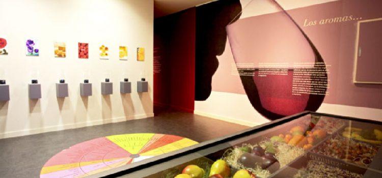 Museo de Vino de la D.O. Campo de Borja